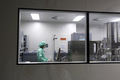 México es parte de la iniciativa de la vacuna COVAX de la OMS (Foto: EFE / EPA / NARONG SANGNAK / Image)