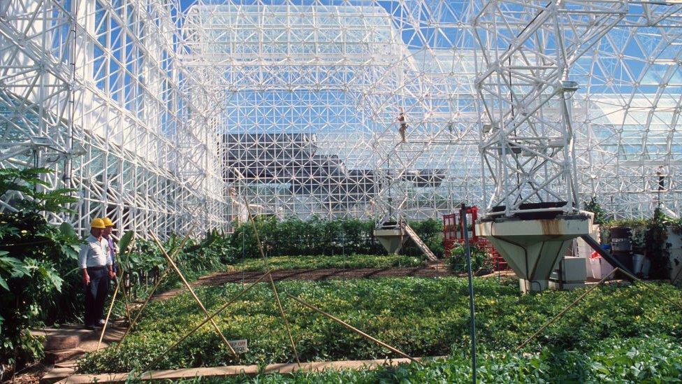 Zona Agrícola Biosfera 2: