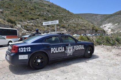 El 9 de julio, se encontraron 23 cuerpos en un cementerio en el estado de Alisko (Foto: POLICÍA FEDERAL DE MÉXICO)