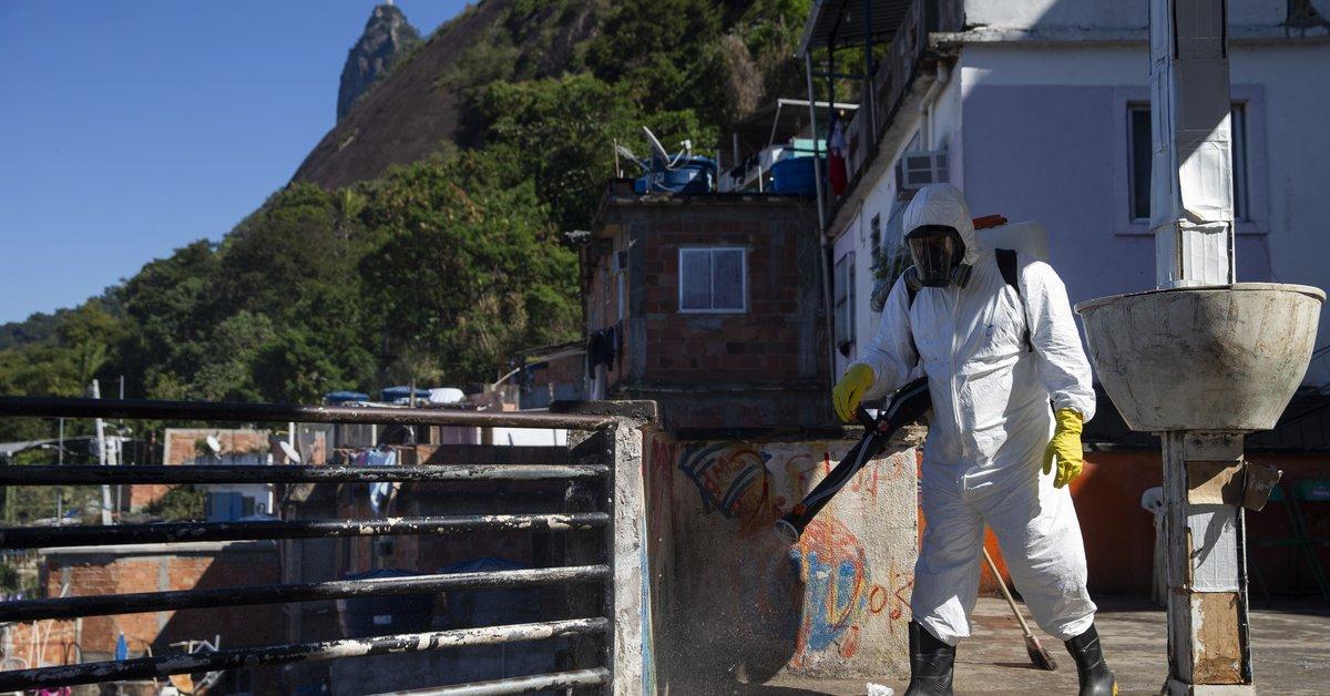 Coronavirus.  América Latina tiene más de 213.000 muertes, la región más afectada de la región