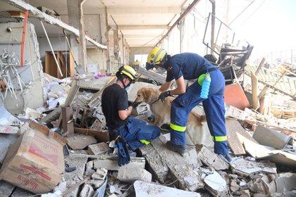 La explosión habría provocado más de 2.000 toneladas de amoniaco (Foto de EFE / EPA / WAEL HAMZEH)