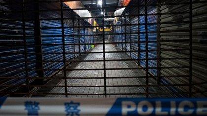 Mercado en Wuhan, donde se supone que comenzó la epidemia (NOEL CELIS / AFP)